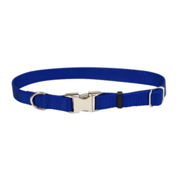 Coastal Pet Adjustable Nylon Titan Blue Metal Buckle Collar