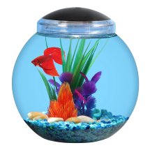 Aqua Culture 1-Gallon Globe Bowl with LED Light, 7.25' DIA x 8.5'H