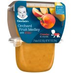 Gerber 3rd Foods Lil' Bits Orchard Fruit Medley Baby Food, 5 oz Tubs, 2 Count