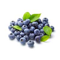 Organically Grown Organic Blueberries