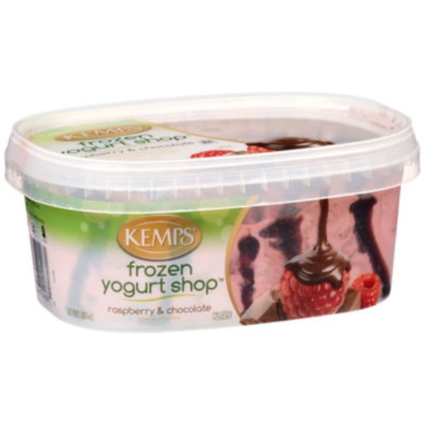 Kemps Raspberry & Chocolate Frozen Yogurt