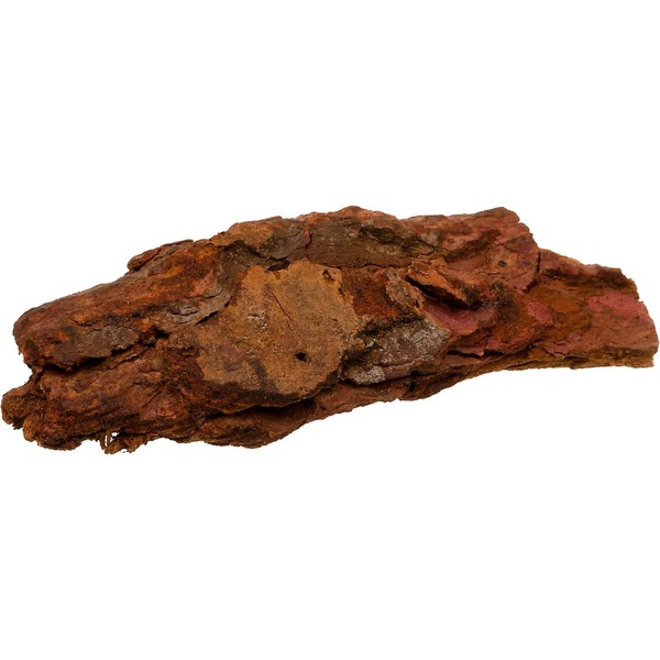 T-Rex Terra Accents Bark Log
