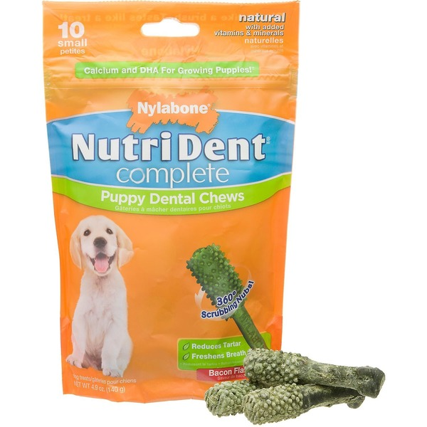 Nylabone Small Nutri Dent Complete Dental Chew For Puppies