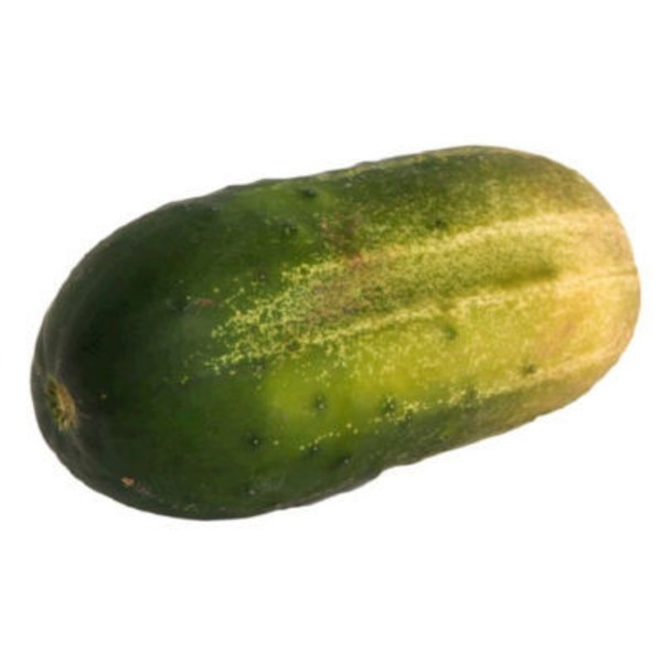 Pickling (Kirby) Cucumber