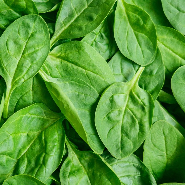 Loose Spinach