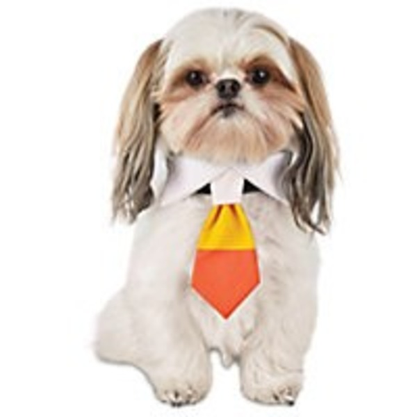 Small/Medium Halloween Dog Candy Corn Tie