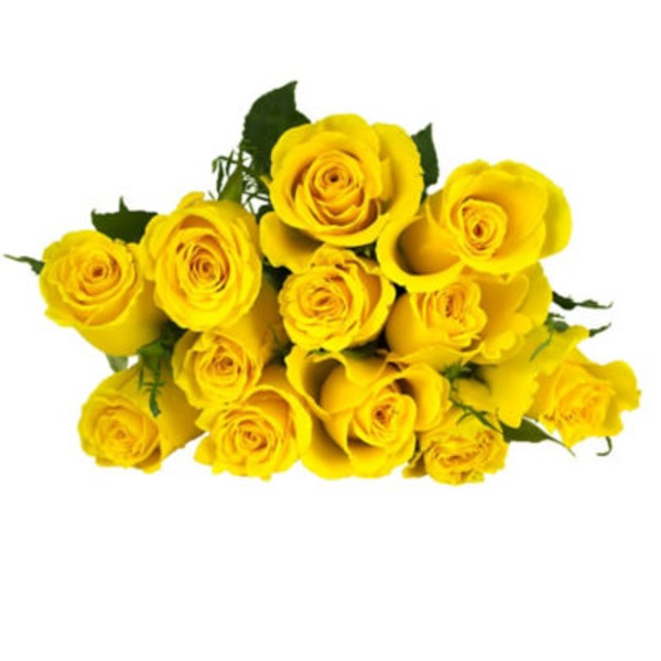 H-E-B Blooms Yellow Roses