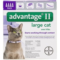 Bayer Advantage® II Topical Flea Prevention and Treatment for Large Cats