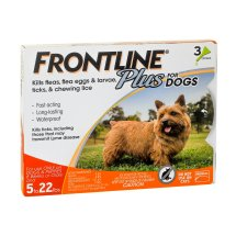 Frontline Plus Flea and Tick Prevention for Small Dogs, 3 Monthly Treatments