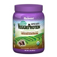 Bluebonnet Organic Super Earth Vegetable Protein Chocolate