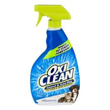 Oxi Clean Carpet & Area Rug Pet Stain & Odor Remover, 24.0 FL OZ