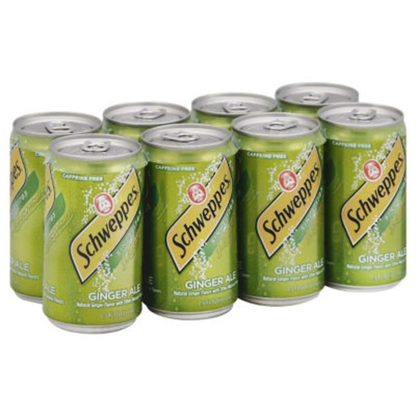 H-E-B Schweppes Ginger Ale Delivery Online in Austin