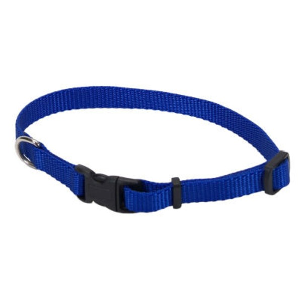 Coastal Pet Blue Adjustable Nylon Collar