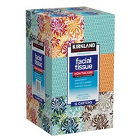Kirkland Signature Upright Facial Tissue