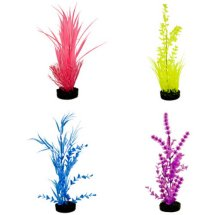 Aqua Culture Water Bouquet Aquarium Plant