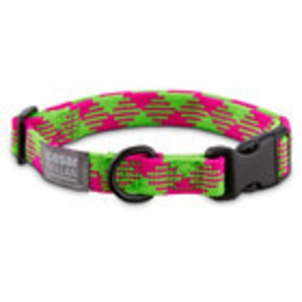Cesar Millan Pink and Lime Large Braided Collar
