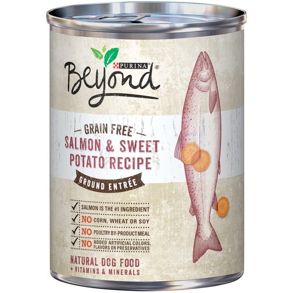 Beyond Dog Wet Grain Free Salmon & Sweet Potato Recipe Ground Entree Dog Food