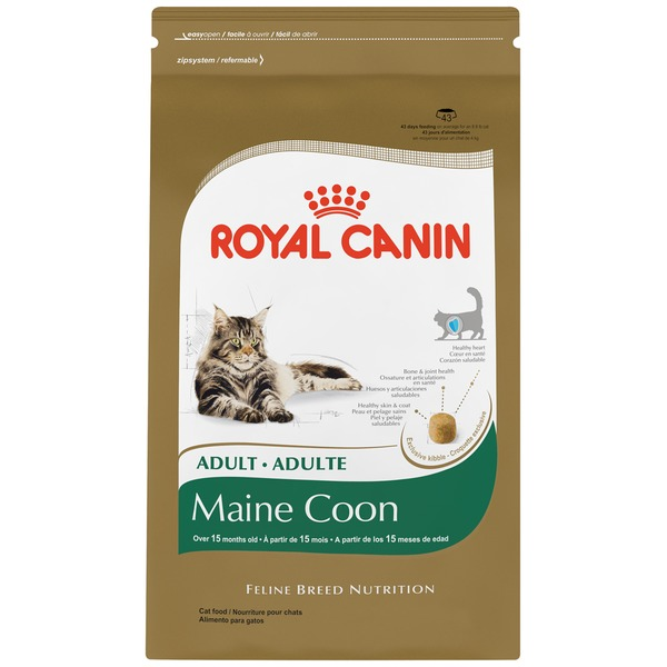 Royal Canin Feline Breed Nutrition Adult Maine Coon Cat Food