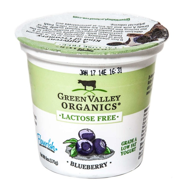 Green Valley Organics Lactose Free Low Fat Yogurt Blueberry