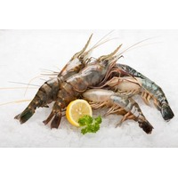 U 12 Wild Prawn Product Of Mexico
