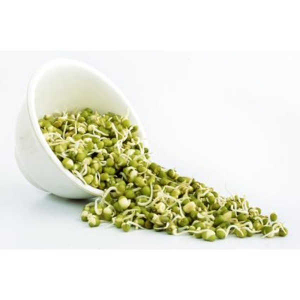 Green Valley Food Corp Mung Bean Sprouts