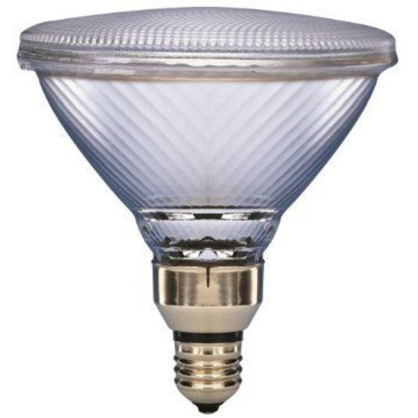 Sylvania 60 Watt Daylight Plus Floodlight
