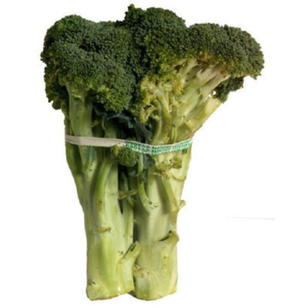 Fresh Broccoli Bunch