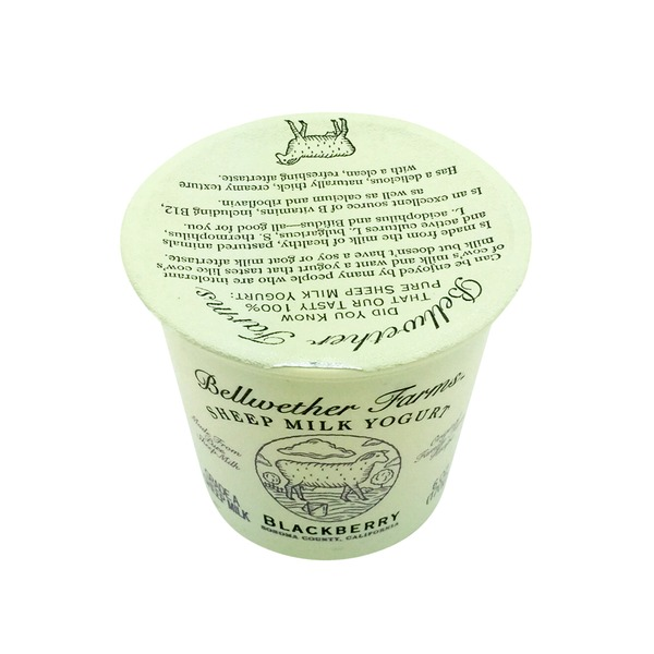 Bellwether Farms Blackberry Grade A Sheep Milk Yogurt