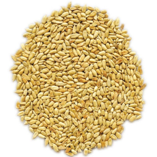 SunRidge Farms Natural Dry Roasted Sunflower Seeds
