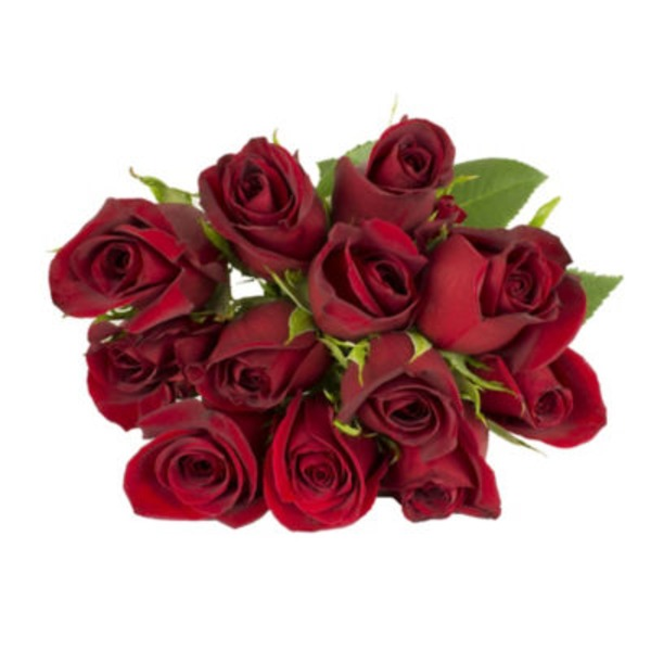 H-E-B Blooms Red Roses