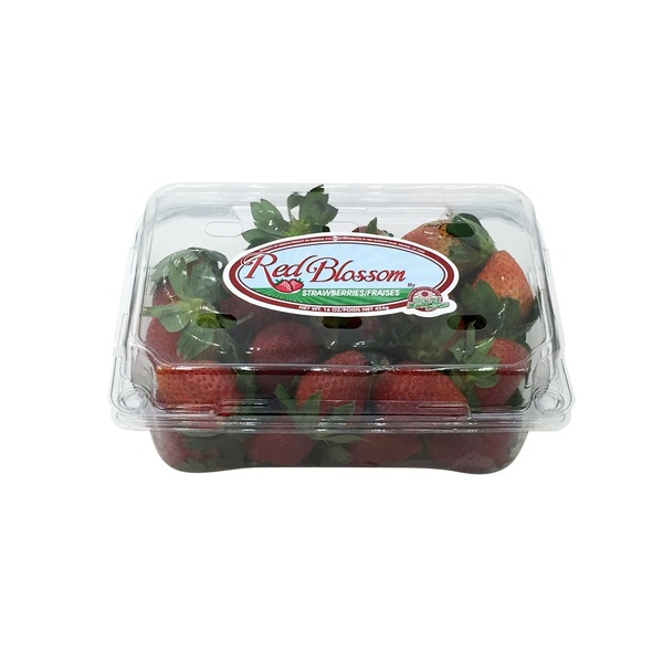 Red Blossom Strawberries