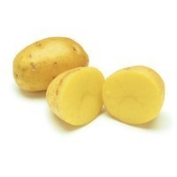 Organic Small Size Yukon Potatoes