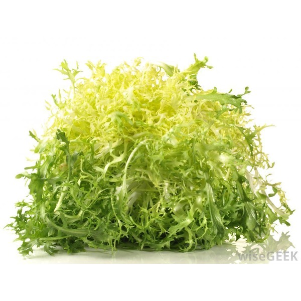 Organic Frisee (Chickory) Lettuce Bunch