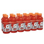 Gatorade Thirst Quencher Fierce Sports Drink, Fruit Punch, 12 Fl Oz, 12 Count
