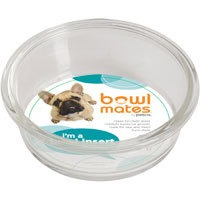 Bowlmates By Petco Small Glass Bowl