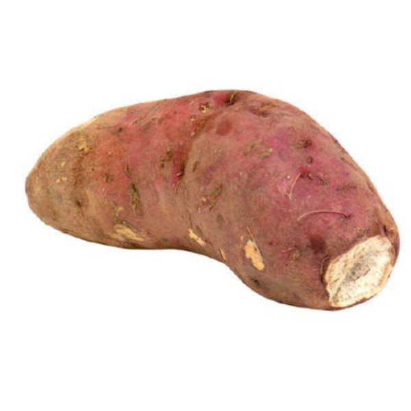 Boniato White Sweet Potato