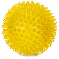 Petco Bouncing Spiny Ball Dog Toy 3.5