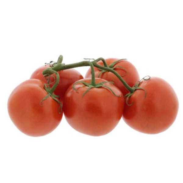 Organic Tomatoes on the Vine