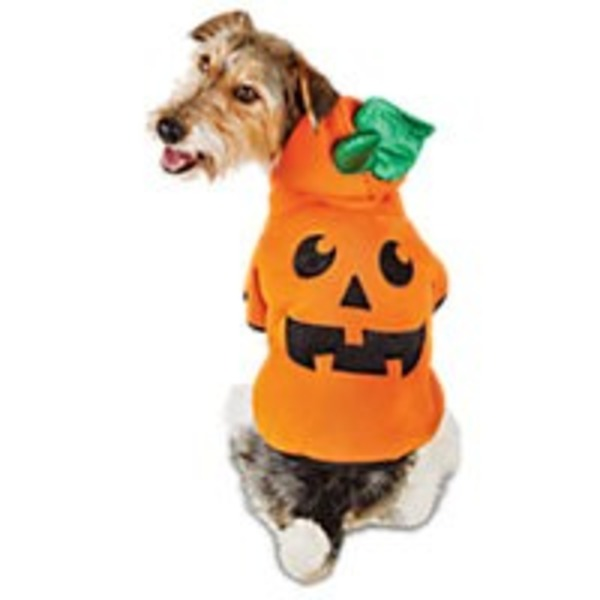 Medium Halloween Iconic Pumpkin Hoodie Kong