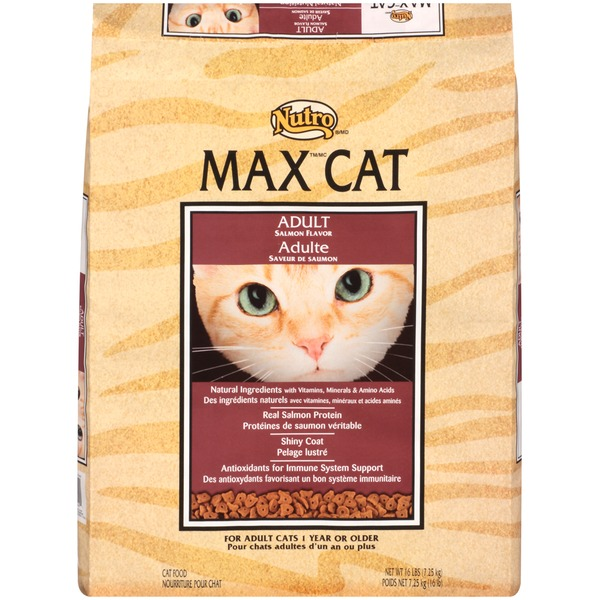Nutro Max Cat Adult Salmon Flavor Cat Food