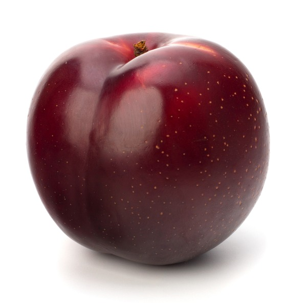 California Red Plum