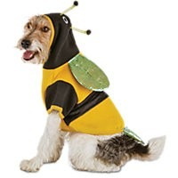 Extra-Extra-Small Halloween Bumble Bee Hoodie