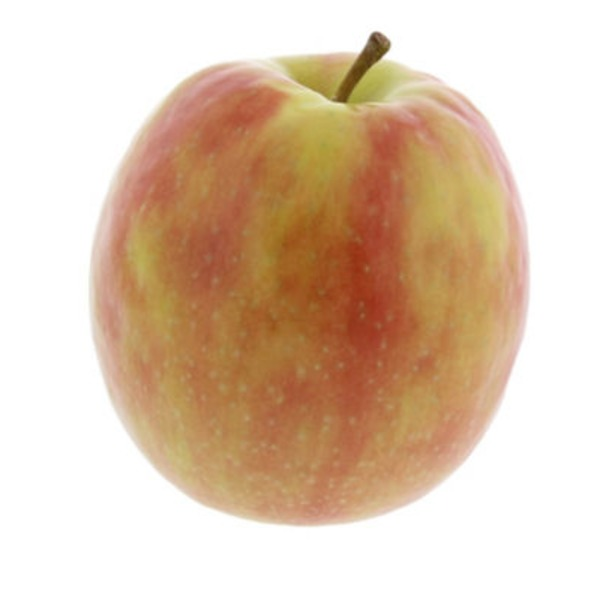 Organic Pink Lady (Cripps) Apple