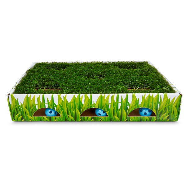Petstages Grass Patch Hunting Box Cat Scratcher
