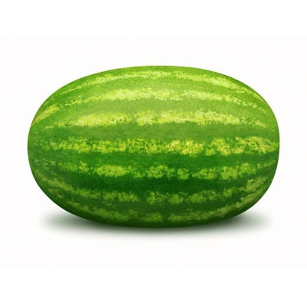 Extra Large Watermelon
