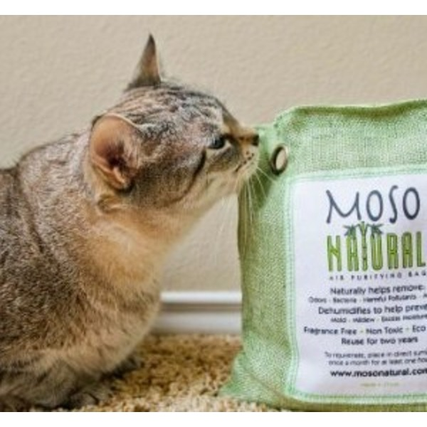 Moso Bag Moso Air Purifying Bag 500 G Green