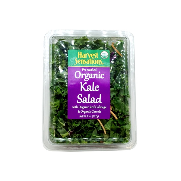 Harvest Sensations Organic Kale Salad with Red Cabbage and Carrots
