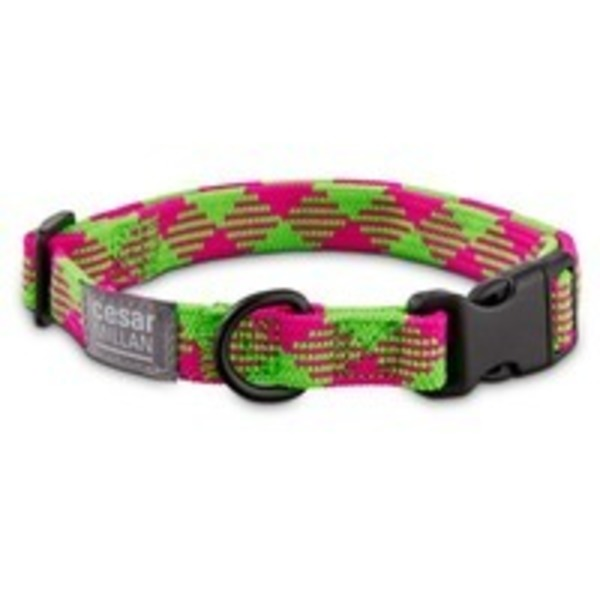 Cesar Millan Small Braided Collar Pink Lime