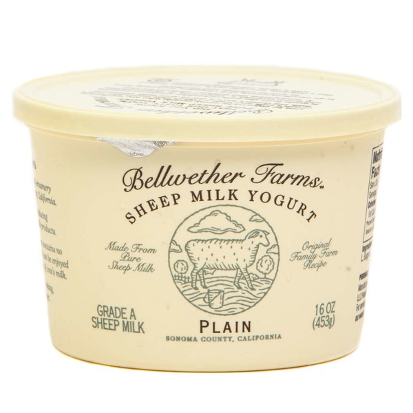 Bellwether Farms Plain Sheep Milk Yogurt