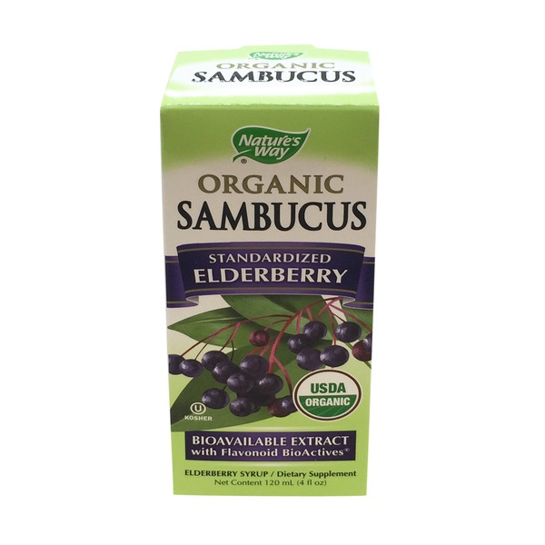Nature's Way Standardized Elderberry Syrup Berry Flavor